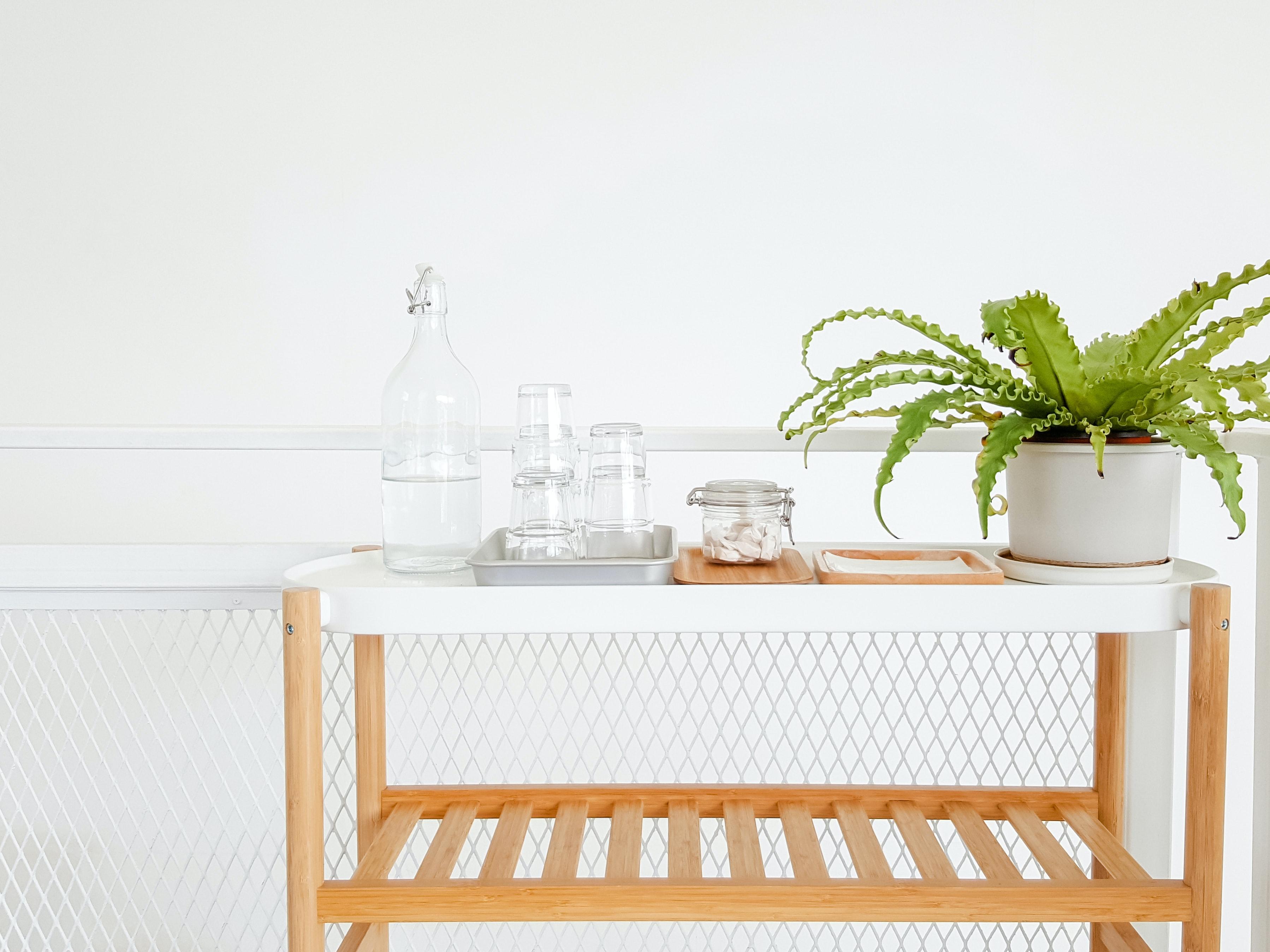卧室绿植摆放指南,实用高颜值必选